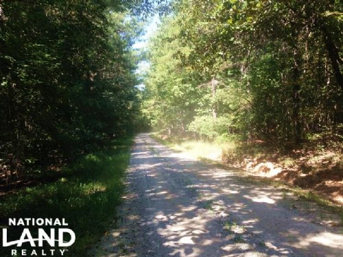 Budapest Road Recreational Homesite : Tallapoosa : Haralson County : Georgia