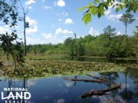 Loris Hunting And Recreational Trac