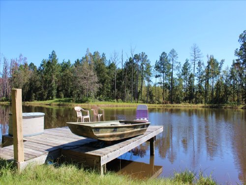 Cabin, Pond, Hunting, And Fishing : Chauncey : Dodge County : Georgia