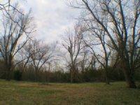 29.3+/- Ac Residential Development : Jonesboro : Craighead County : Arkansas
