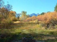 9.66 Acres Horse Farm Land