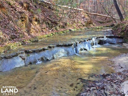 Legion Road Lake Dannelly Camden Tr : Camden : Wilcox County : Alabama