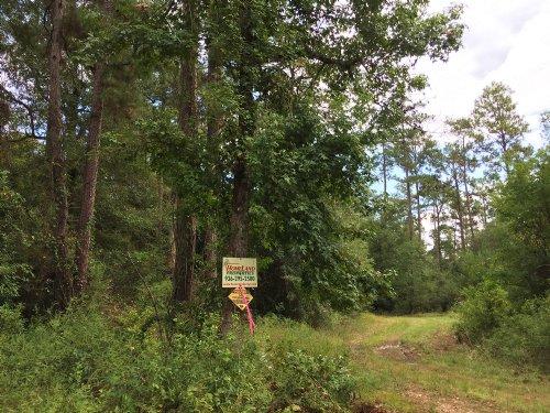 408 Acres Off Cr 4472 : Warren : Tyler County : Texas