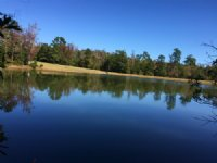 The Pond At Soap Creek : Lincolnton : Lincoln County : Georgia