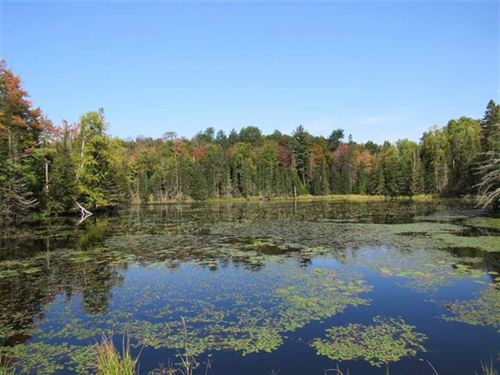 Holli Blue Rd, Mls 1099006 : Michigamme : Marquette County : Michigan