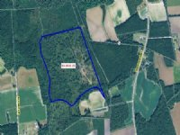 56.50 Acres Farm And Woods Land