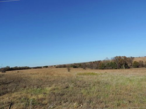 Kansas Deer & Quail Haven : Hartford : Coffey County : Kansas