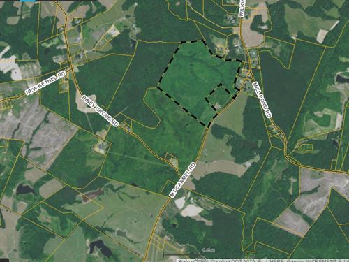 Over 76 Acres In Halifax Co Va : Halifax : Virginia