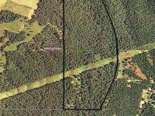 70 M/L Acres : Proctor : Cherokee County : Oklahoma