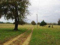 Hope Hull, Alabama 190 +/- Acres : Hope Hull : Montgomery County : Alabama