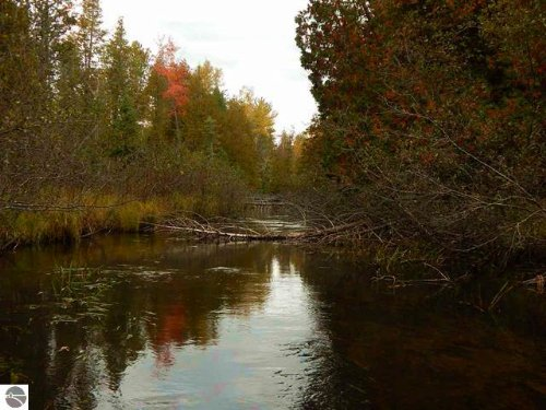 Historic Cabin With River Frontage : Gaylord : Otsego County : Michigan