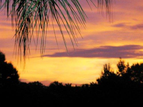 Sarasota County Residential Land : Venice : Sarasota County : Florida