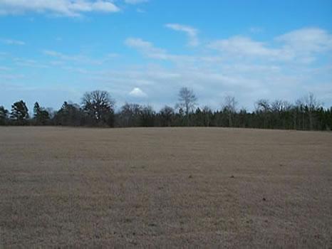 88 Acres : Statesboro : Bulloch County : Georgia