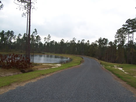 6.61 Acre Lot | Highland Lakes : Eastman : Dodge County : Georgia