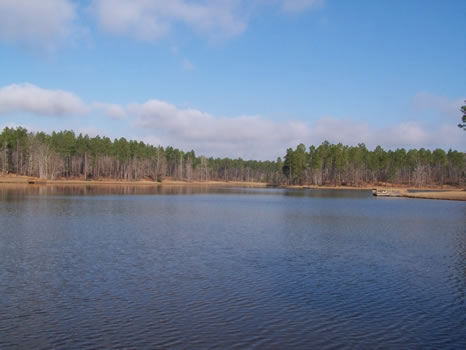 5.04 Acre Lot | Highland Lakes : Eastman : Dodge County : Georgia