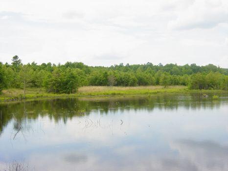255.61 Acres : Irwinton : Wilkinson County : Georgia